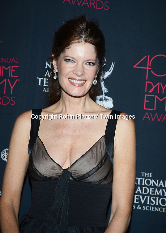 Michelle Stafford in BCBGblack dress attend the 40th Annual Daytime Creative Arts Emmy Awards on June 14, 2013 at the Westin Bonaventure Hotel in Los Angeles, California.