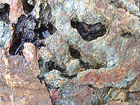 Rock Face Detail, Dyce's Head. Castine, Maine, US
