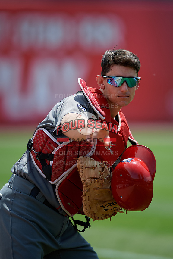 Lehigh Valley IronPigs Rob Brantly (6) jokes around for the camera before an International League game against the Buffalo Bisons on June 9, 2019 at Sahlen Field in Buffalo, New York.  Lehigh Valley defeated Buffalo 7-6 in 11 innings.  (Mike Janes/Four Seam Images)