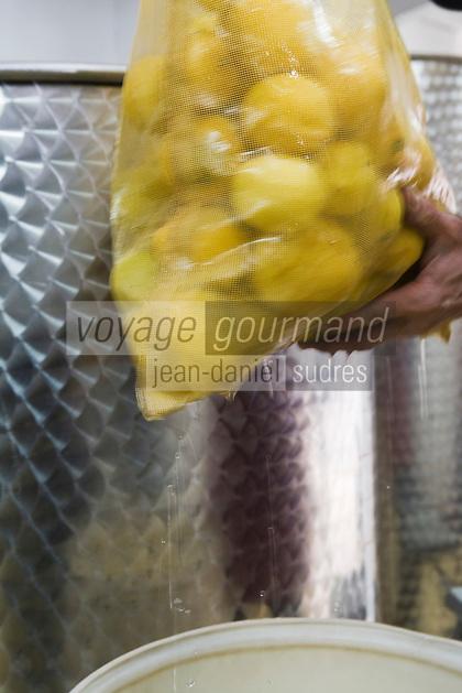 Europe/France/06/Alpes-Maritimes/Menton: Lionel Deremarque, liquoriste - Apéritifs du Soleil - prépare sa iqueur de Menton ( cousine du limoncello)