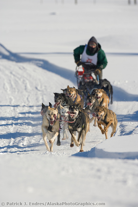 Musher Jason Dunlap, 2007 Open North American Championship sled dog race (the world's premier sled dog sprint race) is held annually in Fairbanks, Alaska.