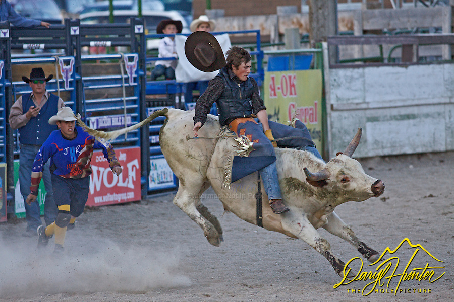 Bull ride, Jackson Hole Rodeo