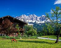 Austria, Tyrol, near Going am Wildem Kaiser: farmhouse and Wilder Kaiser mountains   Oesterreich, Tirol, bei Going am Wildem Kaiser: Bauernhof vorm Wilden Kaiser