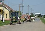 ROMANIA Banat, village Firiteaz, Bio Farmland, a farm run by swiss family / RUMAENIEN Banat, Firiteaz, BIO FARMLAND, betrieben von den Schweizer Einwanderern Familie Häni und Siegrist, alter John Deere Traktor des Betriebes