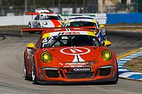 #42 Topp Racing, Porsche 991 / 2014, GT3G: Bill Smith