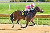 Chella winning at Delaware Park on 10/13/16