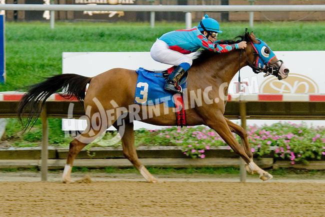 Adios Vacqauero winning. at Delaware Park on 9/6/12