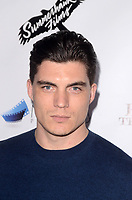 BEVERLY HILLS, CA - JANUARY 10: Zane Holtz at the  Los Angeles Premiere of Beyond The Night at the Ahrya Fine Arts Theater in Beverly Hills, CA. January 10, 2019. Credit: David Edwards/MediaPunch
