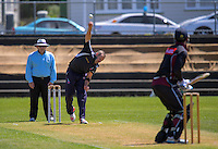 161203 Wellington Club Cricket - Eastern Suburbs v North City