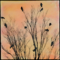 painting with encaustic and photography of birds on branches in orange sky.