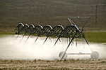 Center pivot irrigation of alfalfa field, Resse River Valley, along old U.S. 50, Nevada Route 722.