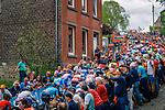 The peloton climb Mur de Huy during the 2019 La Fleche Wallonne, Belgium, 24 April 2019.<br /> Photo by Thomas van Bracht / PelotonPhotos.com / Cyclefile