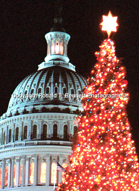 Red lights and people enjoy Christmas tree with United States Capitol in background Washington D.C., Washington DC at Christmas, Washington, D.C. fine art photography by Ron Bennett ©. Copyright, Fine Art Photography by Ron Bennett, Fine Art, Fine Art photo, Art Photography,