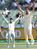 29th December 2019; Melbourne Cricket Ground, Melbourne, Victoria, Australia; International Test Cricket, Australia versus New Zealand, Test 2, Day 4; Pat Cummins of Australia appeals for a wicket - Editorial Use
