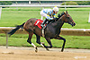 Catcha Rising Star winning at Delaware Park on 6/20/15