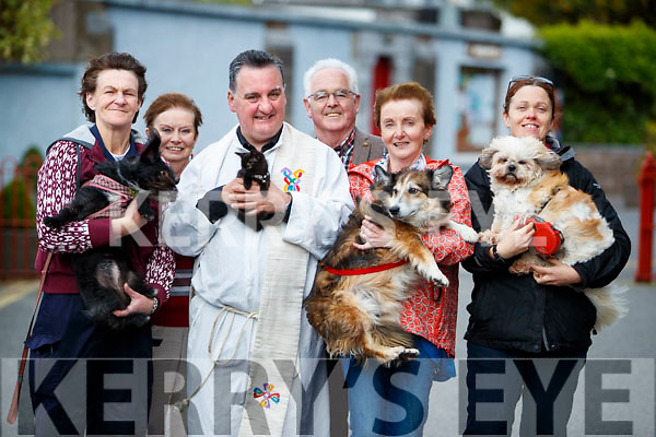 Mary Cotter, Margaret Lynch, Fr Francis Nolan, Pat Lynch, Kay O'Connor and Maria O'Carroll pictured at the Blessing of the pets at Saint Johns church, Tralee on Sunday.