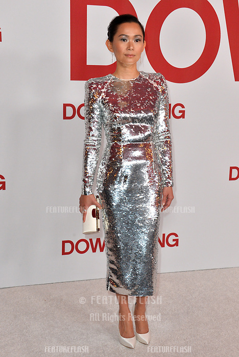 Hong Chau at the special screening of &quot;Downsizing&quot; at the Regency Village Theatre, Westwood, USA 18 Dec. 2017<br /> Picture: Paul Smith/Featureflash/SilverHub 0208 004 5359 sales@silverhubmedia.com