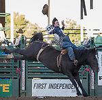 Conner Hamilton rides in the Bareback Bronc Riding event during the Reno Rodeo on Sunday, June 23, 2019.