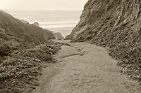 Path to beach at sunset.  Point Reyes National Seashore. California