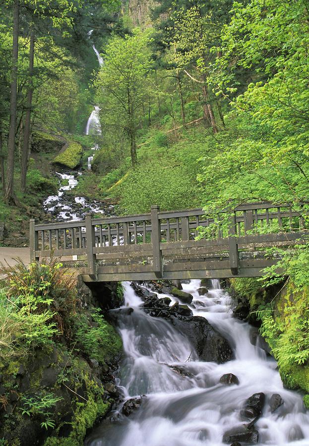 Bridge over Waheena Creek, Wahkeena Falls trailhead, Columbia River Gorge, Portland, Oregon