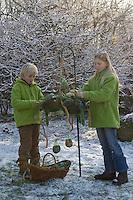 Kinder schmücken Adventskranz im winterlichen Garten mit Vogelfutter, Vogel-Futter, Meisenknödeln, Nußsäckchen, Hirsestangen
