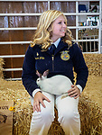 Rabbits in the ring for sale, 54th annual Junior Livestock Auction during Sunday at the 80th Amador County Fair, Plymouth, Calif.<br /> .<br /> .<br /> .<br /> .<br /> #AmadorCountyFair, #1SmallCountyFair, #PlymouthCalifornia, #TourAmador, #VisitAmador