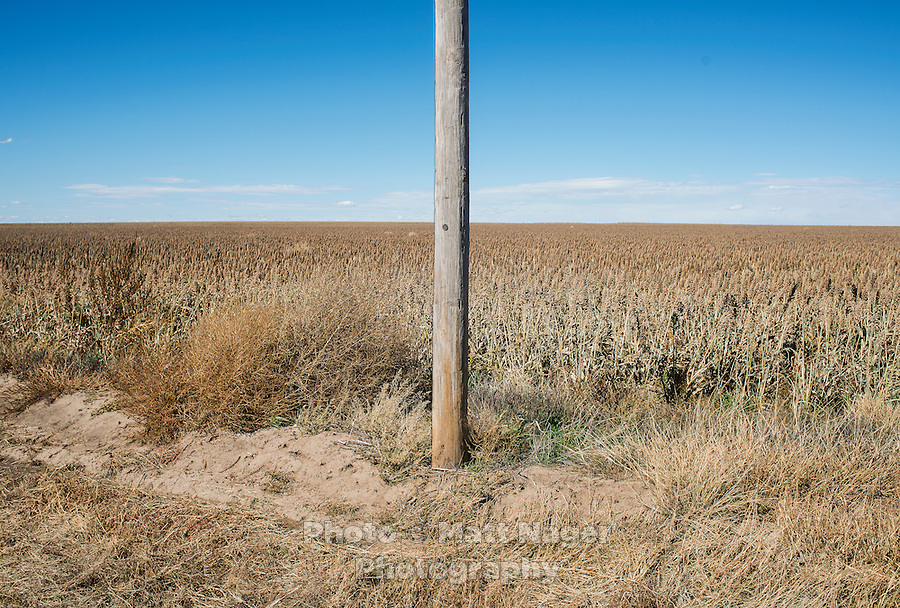 The country surrounding Tribune, Kansas, Friday, October 11, 2013. The challenges of depopulation in the rural Midwest and Great Plains continue to grow as counties increasingly see more deaths than births. Greeley County, Kansas's least populated county, and the state as a whole are mounting a new fight to stem losses and finding early success.<br /> <br /> Photo by Matt Nager