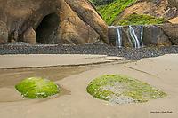 Falls Creek waterfall, Oregon