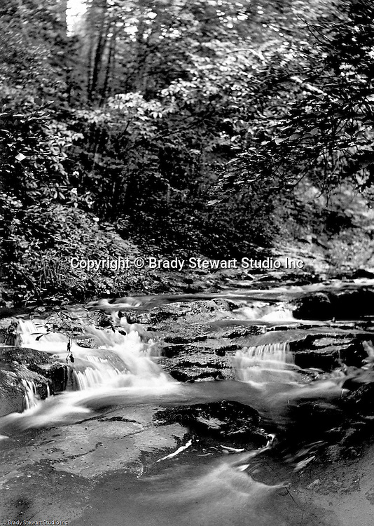 Stewart Township:  View water flowing down Bear Run Creek during the summer of 1905.  Stewart family went to visit Brady family relatives that lived in Stewart Township.