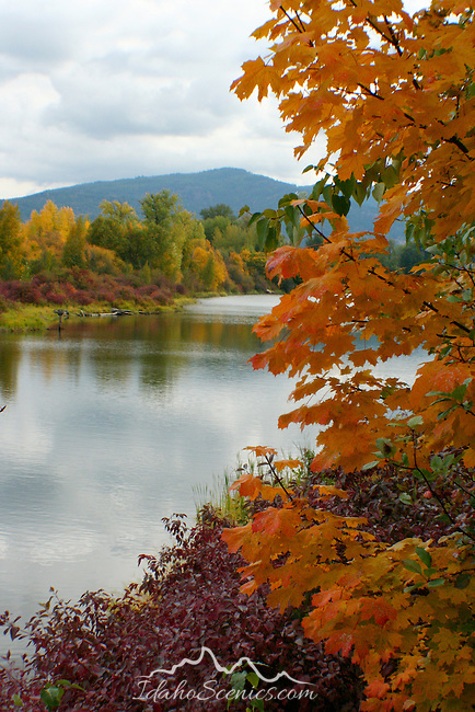 Fall on Sandcreek, Sandpoint, Idaho