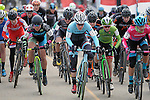 January 10, 2016 - Asheville, North Carolina, U.S. -  Trek Factory cyclist, Katie Compton #1, leads the race from the start during the USA Cycling Cyclo-Cross National Championships at the historic Biltmore Estate, Asheville, North Carolina.  Katie Compton wins the Women's Elite U.S. Cyclo-Cross Championship.
