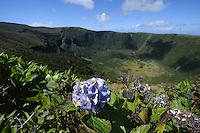 Caldeira auf der Insel Faial, Azoren, Portugal