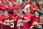 September 26, 2009: Wisconsin Badgers fans cheer during an NCAA football game against the Michigan State Spartans at Camp Randall Stadium on September 26, 2009 in Madison, Wisconsin. The Badgers won 38-30. (Photo by David Stluka)