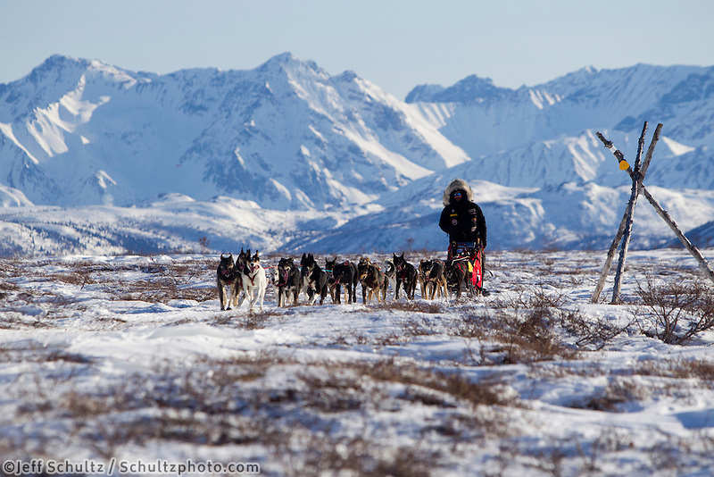 Lance Mackey on the trail after leaving the Rainy Pass checkpoint with the Alaska Range in the background during the 2011 Iditarod