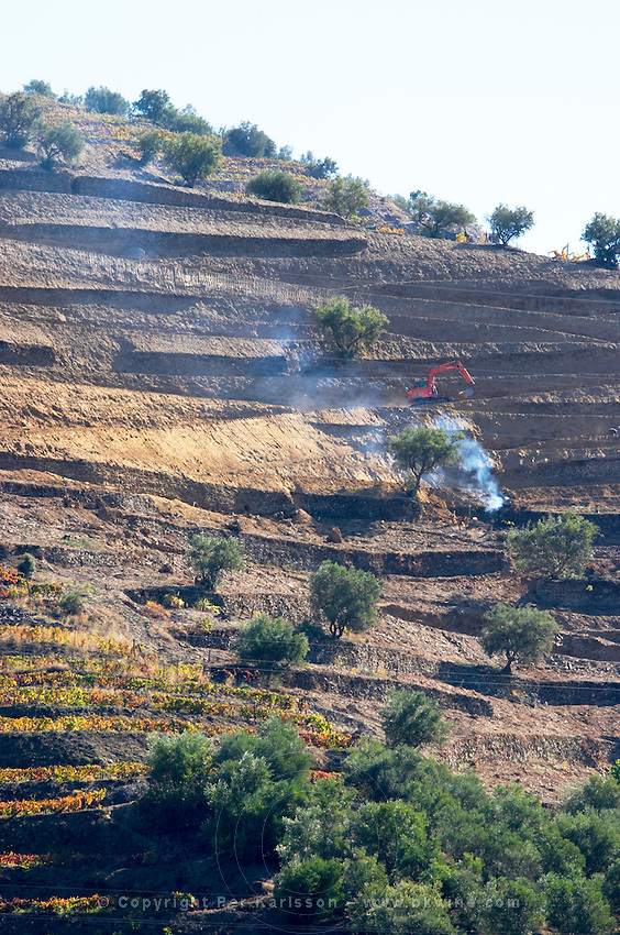 building terraces vineyards douro portugal