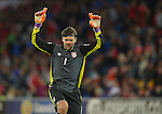 Serbia goalkeeper Vladimir Stojkovic celebrates at the end of the FIFA World Cup Qualifying match at the Cardiff City Stadium, Cardiff. Picture date: November 12th, 2016. Pic Robin Parker/Sportimage