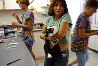 Soft-hearted volunteers like Suki McDermott (center) spend time caring for homeless kitties at the clinic. The cats are trapped, spayed or neutered, give vaccinations and aids and leukemia tests, their left ear is clipped to show they've been caught, and they are released (or adopted if possible) and fed by volunteers. <br /> One veterinarian estimates there are 10,000 feral cats in the Keys. Suki has been volunteering for ten years trying to improve conditions for homeless cats.