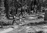 (L-R)  Virginia Mayhew Ansel&rsquo;s granddaughter, Sylvia Mayhew Desin, Ansel&rsquo;s granddaughter, Greg Desin, and Matthew Adams Ansel&rsquo;s grandson hike on trail below the Cony Crags.<br /> <br /> In August of 1987, the family and friends of Ansel Adams made a trip to Mount Ansel Adams to honor Ansel by putting his ashes on the mountain.  Leading the trip were Dr. Michael Adams and his wife, Jeanne, their son, Matthew, and daughter, Sarah.  Also in the group were Ansel&rsquo;s daughter, Anne Adams Helms, and her husband, Ken Helms, and Anne's daughters, Virginia (Ginny) Mayhew and Sylvia Mayhew Desin, and Sylvia&rsquo;s husband, Greg Desin.  Other members of the trip were Roger and Mitzi Hall, Matt Weston, Mrs. Desin (Greg&rsquo;s mother), and Billy Butler.  The Adams family invited me along with Leo Stutzin (Modesto Bee reporter) and my eldest son, Aaron Golub.  <br /> <br /> With some of us on horseback and others on foot, we began the hike at Tuolumne High Sierra Camp and headed to Vogelsang High Sierra Camp for the first night out.  The second day, we began by climbing through Vogelsang Pass, then descended by switchback down to Lewis Creek.  After climbing up from the creek we hiked by the Cony Crags before descending into the Lyell Fork of the Merced River ending up near Hutchings Creek at what is now referred to as the Ansel Adams Camp.  <br /> <br /> This camp was originally known generically as a Sierra Club Camp, but has more recently been referred to as Ansel Adams Camp because in 1934, Ansel led a Sierra Club outing to the Lyell Fork of the Merced River.  After the group climbed the then-unnamed peak that Adams called &ldquo;The Tower in Lyell Fork,&quot; they gathered around the campfire and agreed that the peak should bear Ansel&rsquo;s name.  The U.S. Geological Survey does not, however, permit naming features for living individuals, so the peak did not officially become Mt. Ansel Adams until 1985, one year and one day after his death.  Photo b