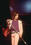 Rod Stewart  1970's