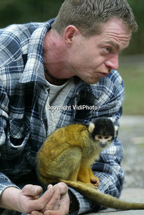 Foto: VidiPhoto..APELDOORN - Personeel van aannemingsbedrijf Draisma BV uit Apeldoorn, geniet volop van de doodskopaapsjes in de Apenheul. De bouwvakkers vernieuwen op dit moment het entreegebouw van het park, maar vertoeven tijdens de schaft vrijwel steeds tussen de apen. Het plezier is in ieder geval wederzijds. Dinsdag startte in de Apenheul het nieuwe seizoen.