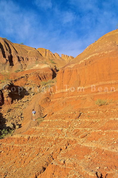 Hiker on trail among cliffs at Palo Duro State Park near Amarillo, Texas, AGPix_0167.