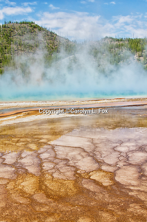 Steam rises from Grand Prismatic Spring in the Midway Geyser Basin in Yellowstone national Park.