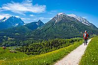 Deutschland, Bayern, Berchtesgadener Land, Ramsau bei Berchtesgaden: Gnotschaft (Ortsteil) Schwarzeck, Wanderer unterwegs auf dem Soleleitungsweg (Wanderweg) mit Blick in die Berchtesgadener Alpen - Watzmann (links) 2.713 m und Hochkalter 2.607 m   Germany, Upper Bavaria, Berchtesgadener Land; Ramsau bei Berchtesgaden: district Schwarzeck, hikers on hiking trail 'Soleleitungsweg' with view towards Berchtesgaden Alps - summits Watzmann 2.713 m (left) and Hochkalter 2.607 m