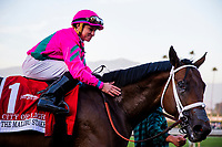 ARCADIA, CA - DECEMBER 26: City of Light #1 gets a pet from Drayden Van Dyke after winning the Malibu Stakes at Santa Anita Park on December 26, 2017 in Arcadia, California. (Photo by Alex Evers/Eclipse Sportswire/Getty Images)