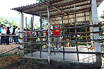 "Veterans for Peace member Chris Jaminson checks out a newly-built cow shed in A Luoi, Vietnam. The ""Orange Cow"" program, sponsored by the Australia-based Vietnamese Victims of Agent Orange Trust, raises money to purchase breeding cows for families who have been affected by Agent Orange exposure. Cows in the valley frequently die during the wet winter months because they lack proper shelter, according to villagers. Veterans for Peace toured Vietnam in April to learn about efforts to mitigate the suffering of the country's Agent Orange victims and people who have been injured by bombs and land mines left over from the war. April 25, 2013."