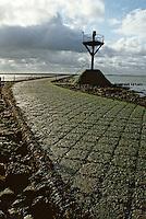 Europe/France/Pays de la Loire/85/Vendée/Ile de Noirmoutier: Passage du gois