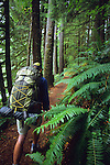 A young man hikes along the Lewis River Trail in the Gifford Pinchot National Forest, Washington.