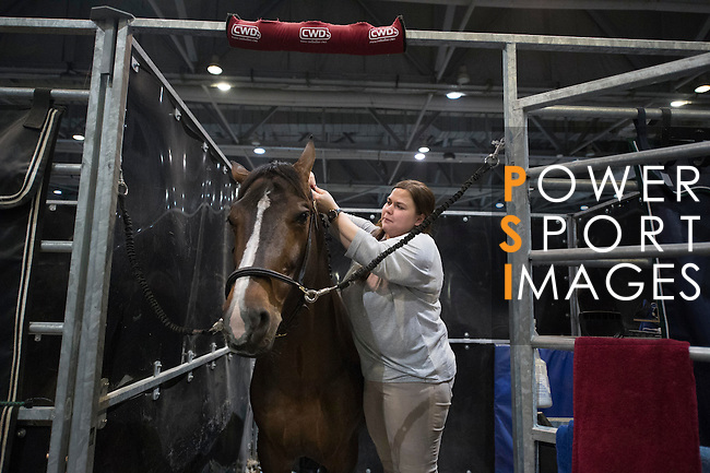 The stables during the HKJC Race of the Rider during the Longines Masters of Hong Kong on 20 February 2016 at the Asia World Expo in Hong Kong, China. Photo by Li Man Yuen / Power Sport Images