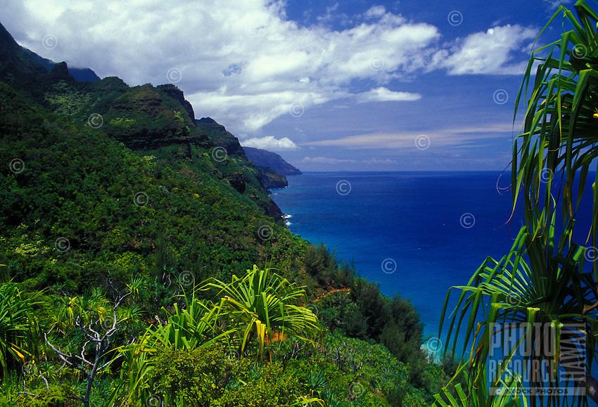 Trail to Hanakapiai on Na Pali coast