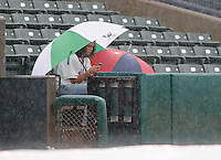 A fan checks her cell phone during a rain delay before a game between the Myrtle Beach Pelicans and the Potomac Nationals on Aug. 7, 2010, at BB&T Coastal Field in Myrtle Beach, S.C. Photo by: Tom Priddy/Four Seam Images